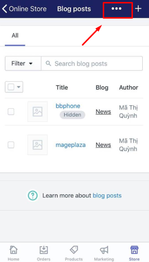 To apply a template to a blog on iPhone 4