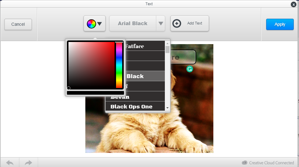 Select a font and color 2