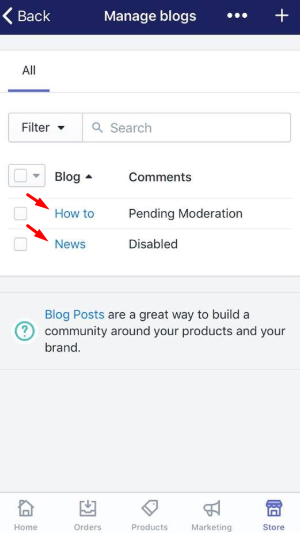 To apply a template to a blog on iPhone 5