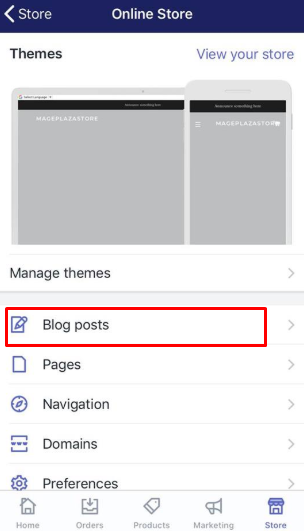 To apply a template to a blog on iPhone 3